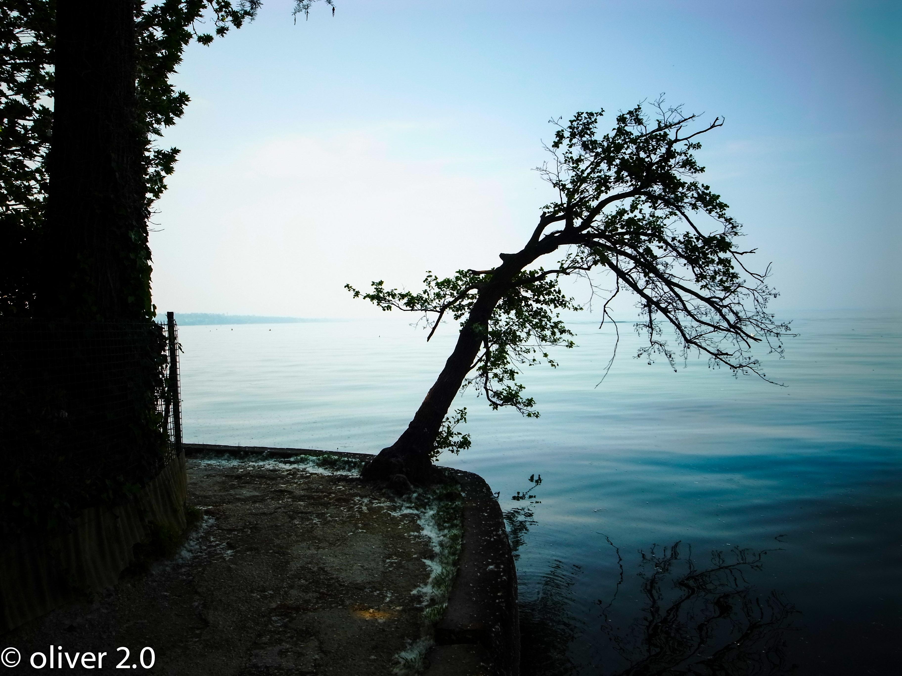 Goethe am Gardasee.